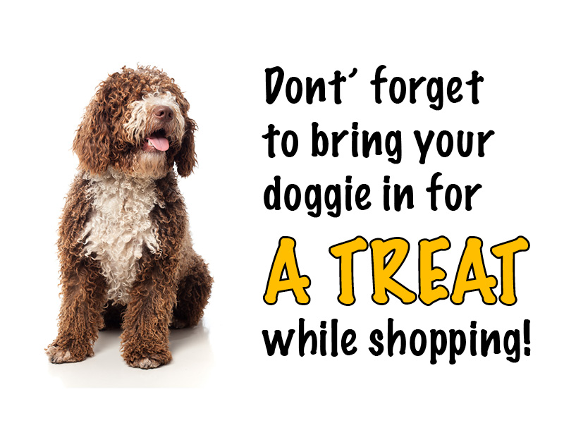 Bring Your Doggie In for a Treat!